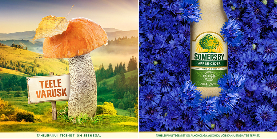 Somersby-sots_8
